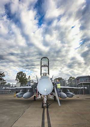 Leading Aircraftwoman Aimee-Rose Carter and Leading Aircraftman Fletcher Moulton perform routine checks on the newly arrived EA-18G Growler at No. 6 Squadron, RAAF Base Amberley. Credit: Defence