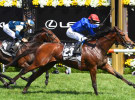 Melbourne Cup TV ratings up slightly, as streaming skyrockets