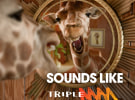 Southern Cross switches two Hit stations to Triple M