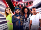 The Voice finale down on last year