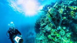 Qantas unlocks Great Barrier Reef virtual reality experience