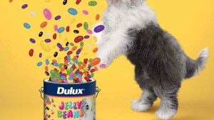 Dulux invites Australians to 'Spring into it'
