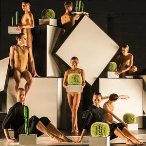 Sydney Dance Company dancers perform Alexander Ekman's Cacti. Photo by Peter Greig.