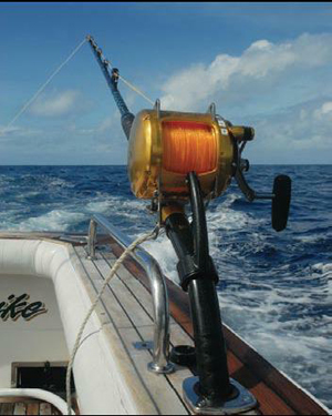 Rethinking rod holders fishing world for Expensive fishing poles