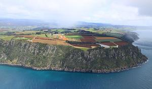 Unexpected flower show atop Table Cape, Wynyard, as we begin our scenic flight across the northern coast of Tassie. (Shelley Ross)