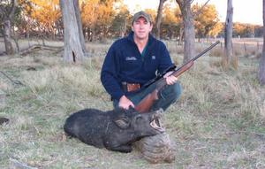 With careful placement of an appropriate projectile - Taipan 50gn HP - small pigs are fair game with the Hornet.