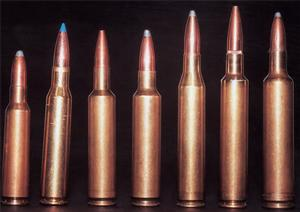 The .25-284 - A Short-Coupled .25-06 - Sporting Shooter