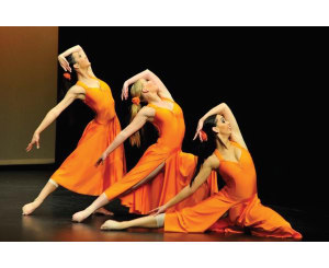 AUSTRALIAN DANCE iNSTITUTE (ADi)