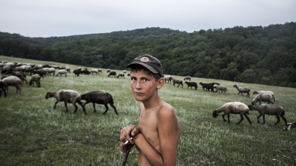 Copyright: © Ilya Bugaev, Moldova (Republic of), Shortlist, Youth, Diversity (2019 Youth competition), 2019 Sony World Photography Awards. For many years, work was in full swing in the gorge near Trinka village, Moldova. For centuries, lime was mined here, burned, and sent to all the surrounding area. Today, the walls of this natural quarry are overgrown with grass and trees, the old kilns have been destroyed, and this village is famous for its meadows rather than its fossil resources. However, there is enough work here now. Herds of sheep grazing require a shepherd. It was important for me to capture the calm and tranquility in the eyes of this young shepherd, cut off from work, knocked out of his routine by a visit from an unexpected guest. This is exactly what is rarely seen in the bustle of the city, in the eyes of those who work far from nature and whose leisure is not enriched by unity with beautiful natural landscapes.