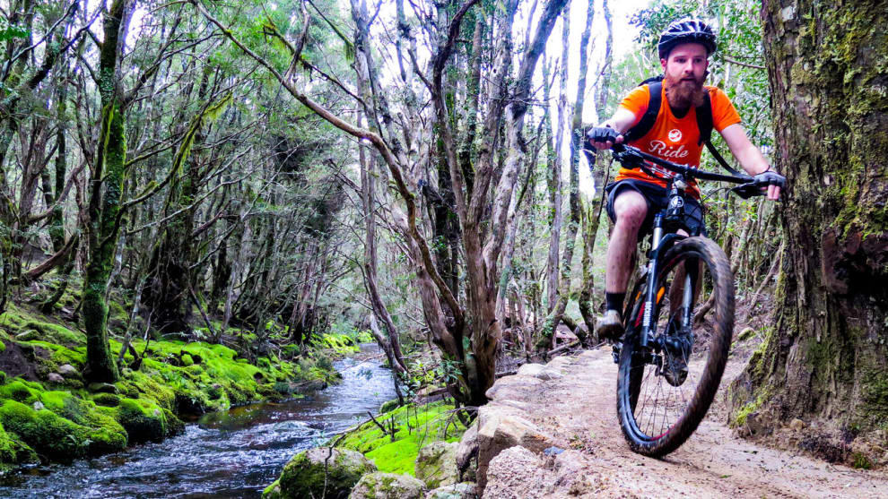 Scott Gelston takes in the beautiful Tasmanian wilderness and immaculately built trails of the Blue Tier.