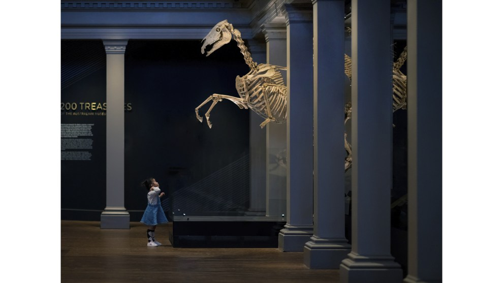 Derek Zhang, 'Night at the Museum: Summon of the Horse'. Winner, 2018 Photo of the Year (single).