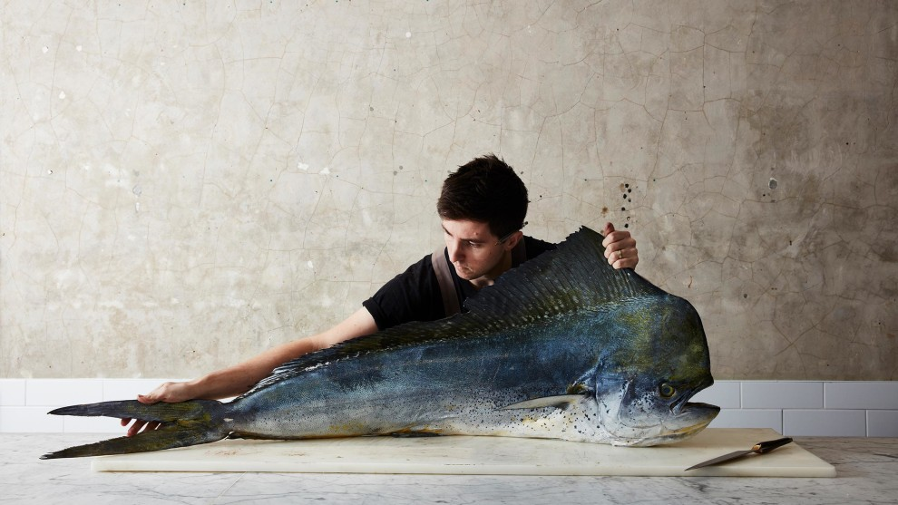 © Rob Palmer. The mahi-mahi, 2019. National Photographic Portrait Prize 2020 - Overall winner. Josh Niland, head chef and owner of Saint Peter restaurant, is reinventing what can be done with fish, and – most importantly – with every part of the fish, in a huge effort to drastically reduce wastage. His trailblazing work has received enormous praise from the likes of Jamie Oliver and Nigella Lawson.