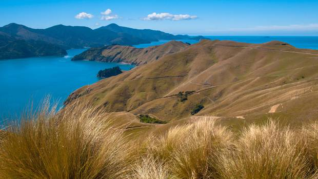 A yacht crew member had to walk five hours to get to French Pass in the Marlborough Sounds and raise the alarm after their yacht broke down. Photo / 123rf/NZ Herald.