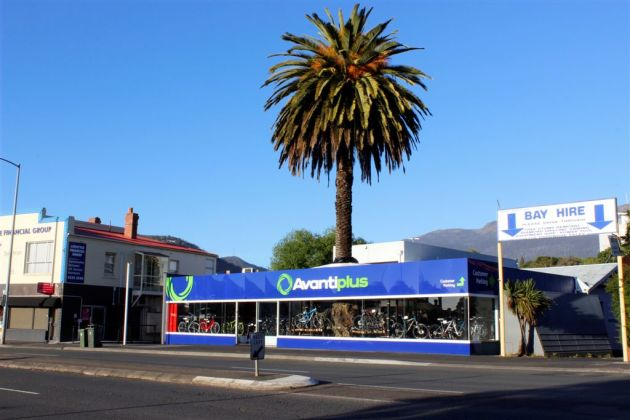 AvantiPlus Hobart… yes, the giant tree grows right through the middle of the store!