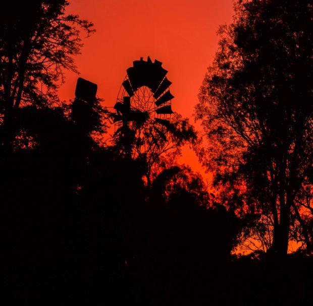 'Red Sky in the Morning,' by Rhonda Brasser