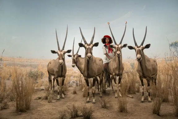 © Cade Martin. Gemsbok, from the series, Diorama.