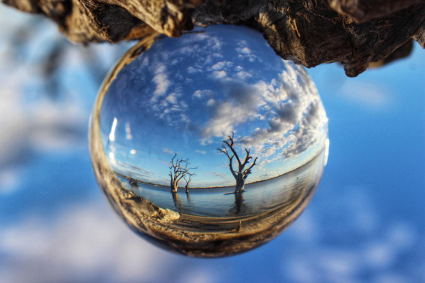 Donna Sorenson, Through the looking glass (2017 Entrant - Photo of the Year).
