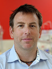 Professor Andrew Harris. Credit: University of Sydney