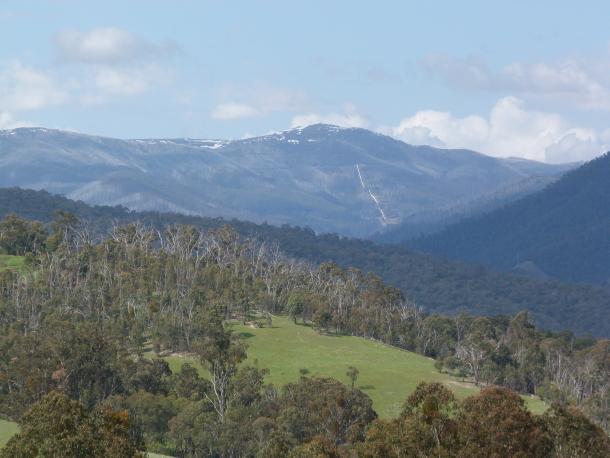 sambar hills