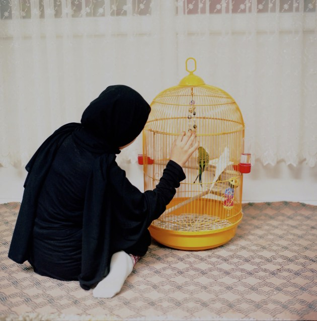 © Sabiha Çimen. Hafız: Guardians of the Qur'an. Asya plays with pet birds in her friend Hodja's room, at a Qur'an school in Rize, Turkey, on 7 July 2018.