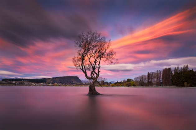 The famous Wanaka Tree at sunset. Canon EOS6D, Canon 16-35mm F4 lens. 80s @ f16, ISO 50. Benro carbon fibre tripod , RRS BH55 ballhead. Lee 6 stop ND filter and CPL. Colour and contrast adjustments in Adobe Photoshop CC.