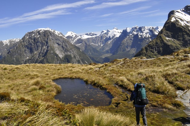 Mackinnon Pass is the highest point (1,154m) on the Milford Track.