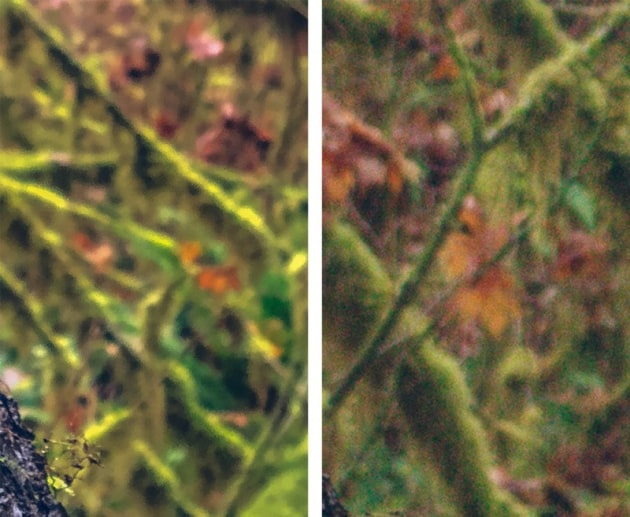 Left: Noise-reduced stock camera app image. Right: RAW capture. Some of iPhone's aggressive noise reduction can look odd, or 'smudgy'.