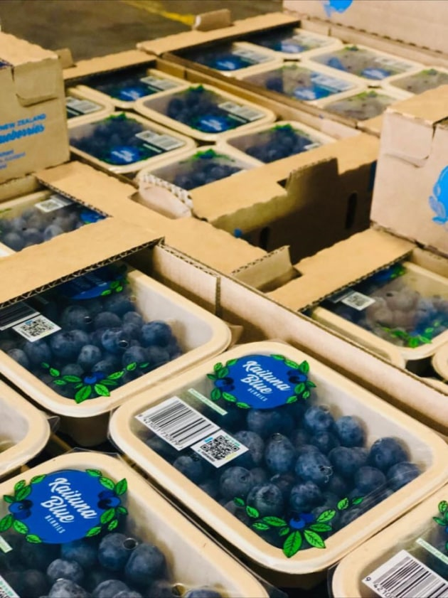 PIDA 2019 Finalist, Food and Sustainable Packaging Design: Punchbowl Packaging for Kaituna Blueberries peel-able, re-sealable, tamper-proof top seal fibre punnets.