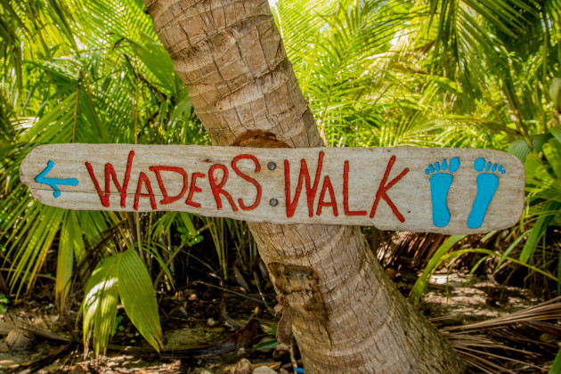 Waders Walk is a nice little side track with lots of migratory birds.