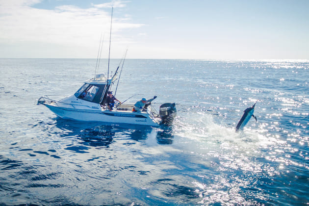 Game fishing is a team effort, with everyone onboard having a role – angler, deckie, skipper... and on this boat, a drone pilot!