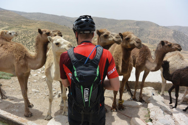 Hydration station for camels and Camelbak