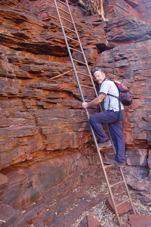 The ladder down to Hancock Gorge. Ian Smith