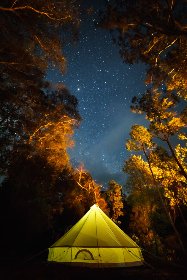 Copyright: © Lauren Hook, Australia, Shortlist, Open, Travel (Open competition), 2019 Sony World Photography Awards. Family camp under the stars on the Colo river, NSW. The family all asleep and a small nightlight still on in the tent, I was enjoying the last remaining heat from our camp fire when I saw this composition. Shot low to the ground at a wide angle, I wanted to capture as much of the sky and canopy as I could. Luckily as I was taking the image, campers further down the hill added firewood to their campfire and illuminated the trees even further.