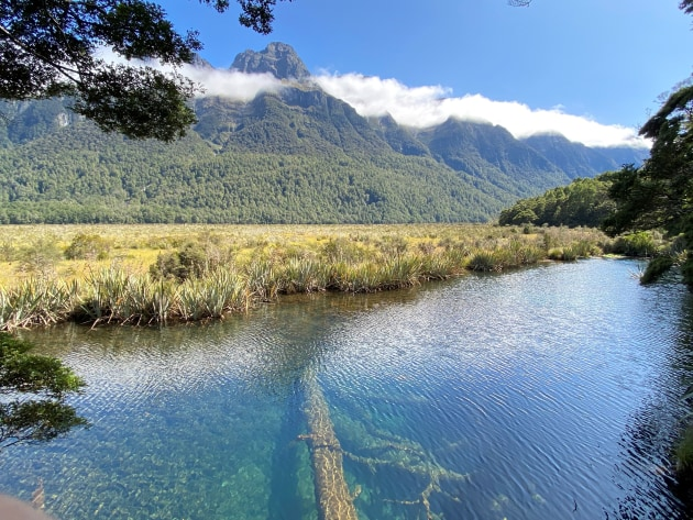 Day 3 we make our way from Te Anau a long the Milford Road to start our overnight cruise of Milford Sound. A popular stop on route, Mirror Lakes. A photography's paradise.