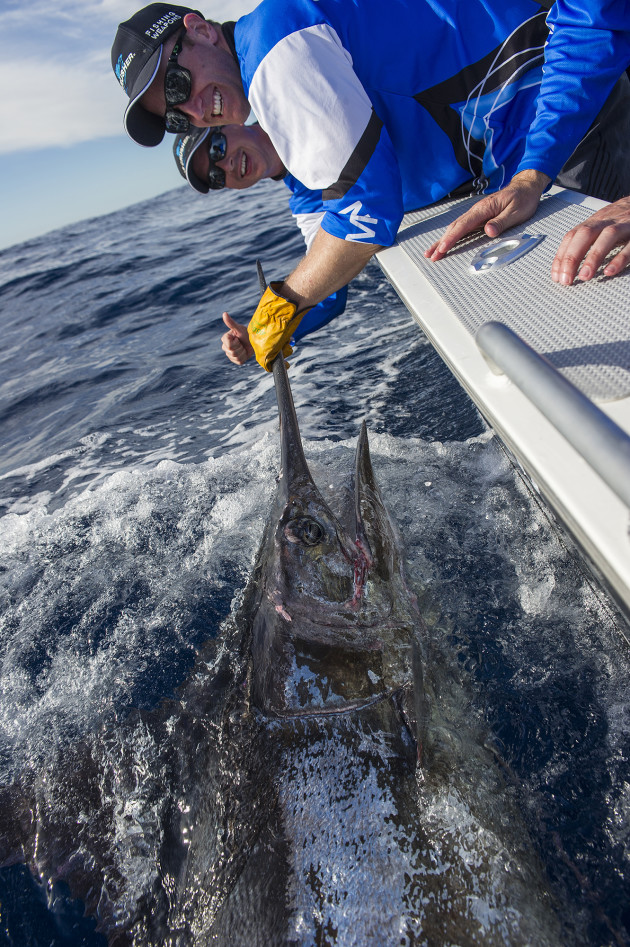 New Garmin Australasia GM Adam Howarth (foreground) and his predecessor Matt DeMoss with a 250kg+ blue marlin caught and released off Sydney last week.
