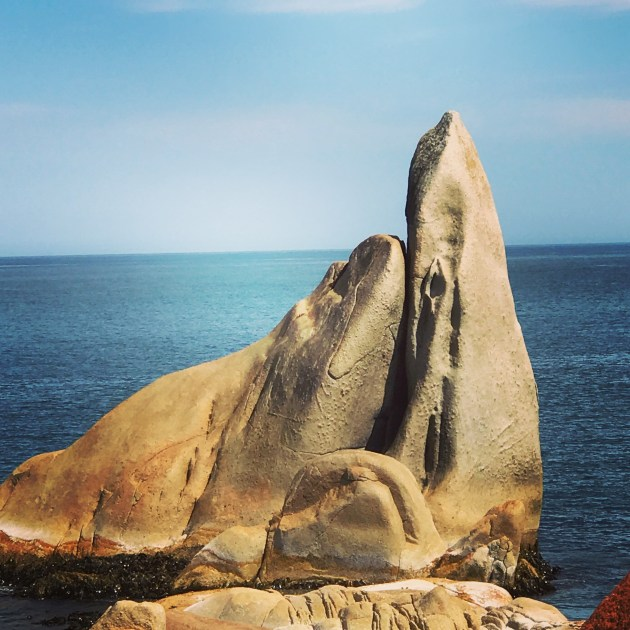 Is it just me or does this rock formation look like a seal hugging a whale?!