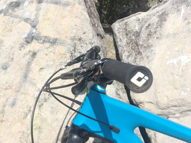 Running the brake levers in a relatively 'flat' position serves to drop the heal of the palm down behind the bars, making it easier to hang on over rough terrain. This position is also better for really steep descents.