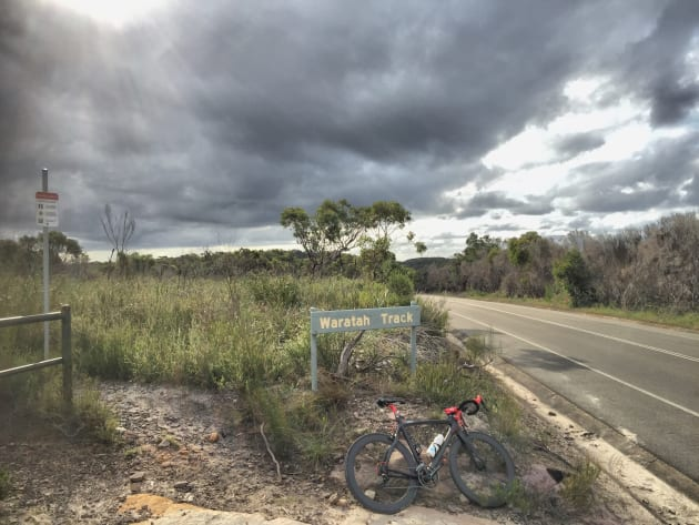 There are numerous tracks off West Head Rd - popular for walkers and mountain bikers alike.