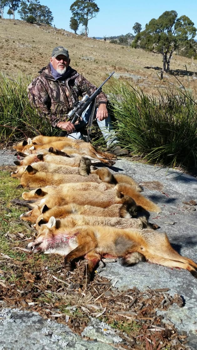 Ron Kienhe-fox haul