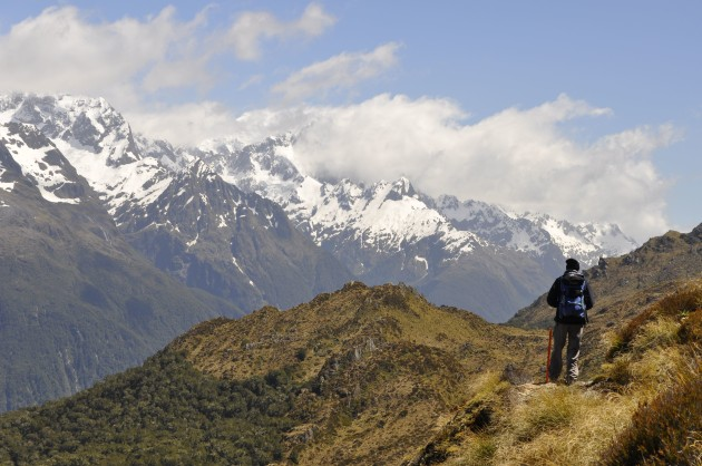 More top views on the Hollyford - straight out of 'Lord of the Rings'!