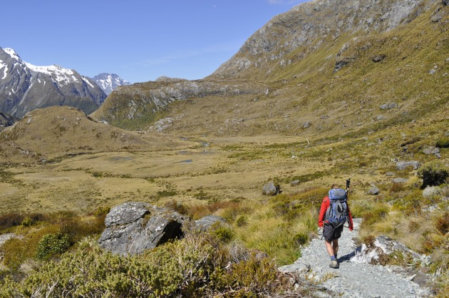 The track down Routeburn Valley.