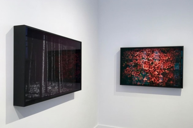 Installation shots from Anton Kusters' exhibition,
