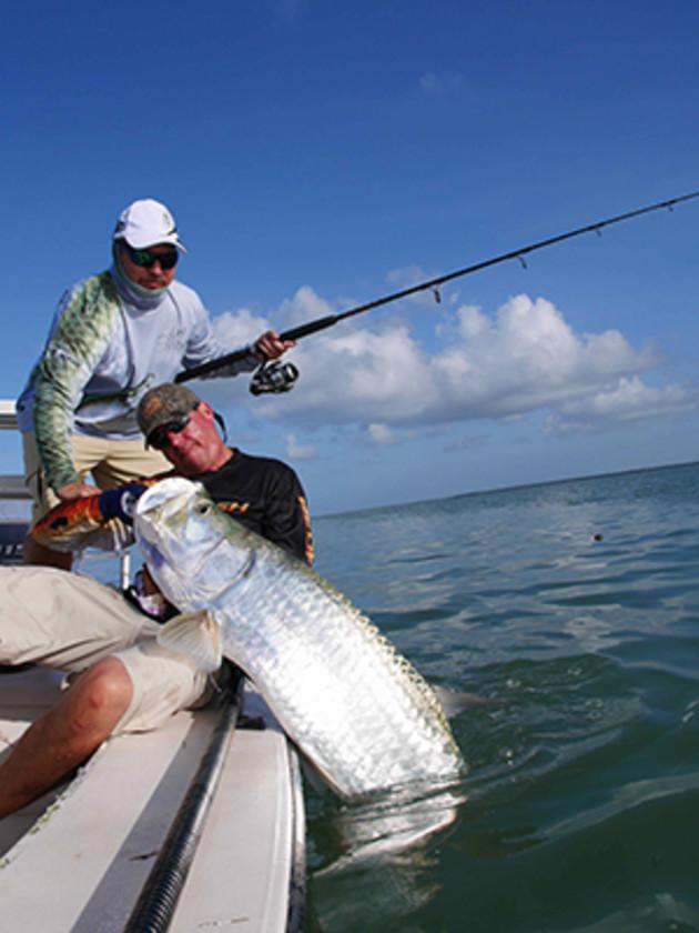 Bigfish catch big fish fishing world for Catching big fish