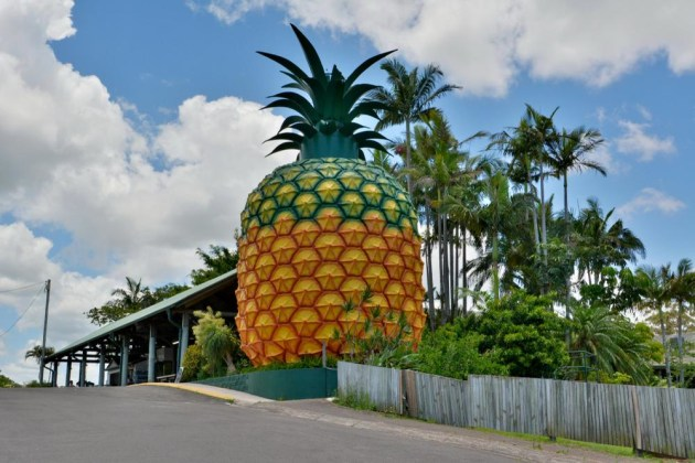 A $60 million-dollar food manufacturing and agribusiness precinct is part of a broader $150 million renewal project to transform the Big Pineapple site.