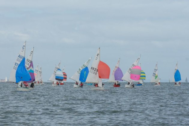 Cadets competing at last year's Lipton Cup Regatta at the Royal Yacht Club of Victoria - Photo Damian Paull.