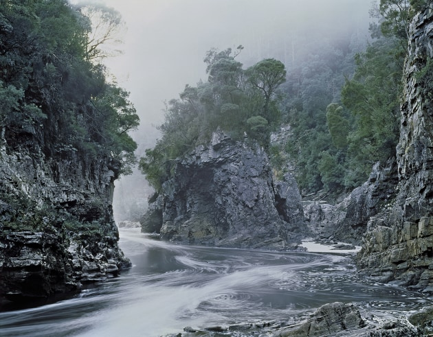 Peter Dombrovskis, Morning Mist, Rock Island bend. The image that many consider saved the Franklin river, helped bring down Malcolm Fraser's government and ultimately win the No Dams campaign, one of the most significant environmental wins in Australian history. Dombrovskis famously said at the time,'If the dam goes ahead, I would find it simply too painful to stay here. I would leave Tasmania. I wouldn't stay!'