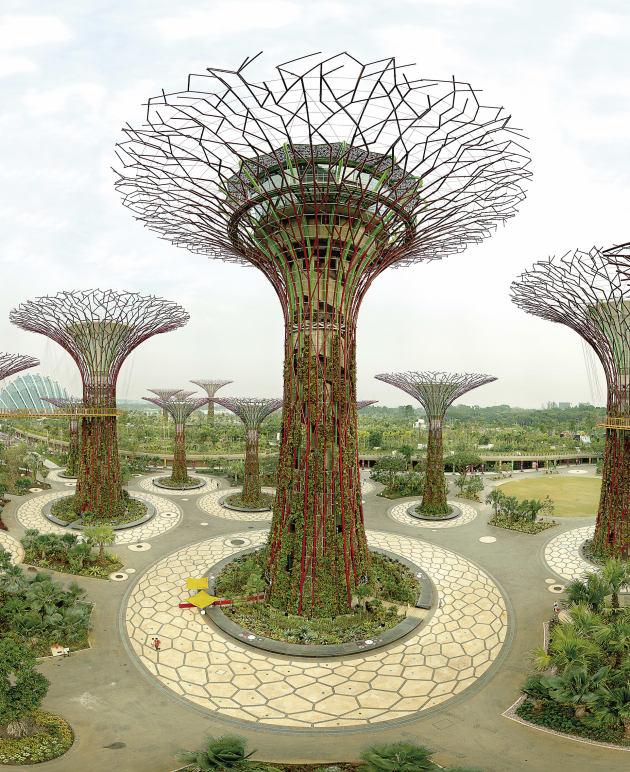 © Olaf Otto Becker. Supertree Grove, Gardens by the Bay, Singapore 10/2012, from the 'Reading the Landscape' series, pigment inkjet print, 187 x 156 x 5 cm.