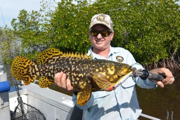 Scotty with a colourful Queensland Grouper
