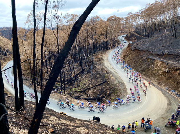 Stage 3 of the 2020 TDU, Turtur's final race, passed through Cudlee Creek, an area severely impacted by fire just weeks earlier. Image: Nat Bromhead