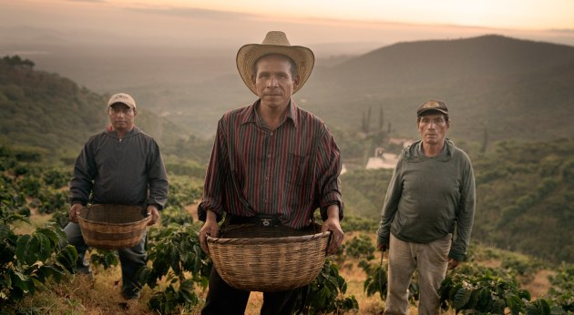 Part of a campaign for Campos Coffee, shot on location in El Salvador and Costa Rica. Agency: YOLO. © James L. Brown.